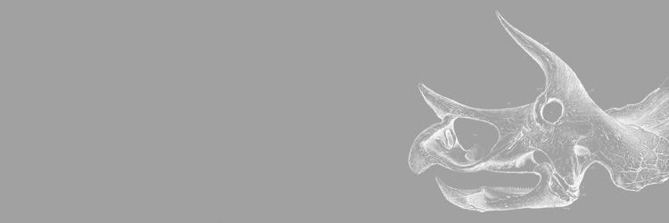 Dinowhite750b